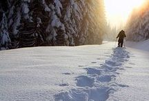 Think Snow / Ways to have fun on snow, Nordic skiing, snowshoeing. Beautiful trails, destinations and tips.