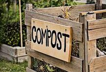 Composting: Living Green