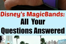 MyMagic+ / Walt Disney World vacation online planning, FastPass+, My Disney Experience, Magic Bands and More!