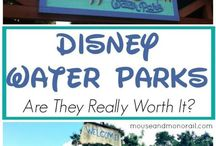 Disney Water Parks / Typhoon Lagoon and Blizzard Beach