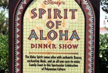 Disney Dining Shows