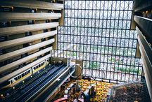 Disney's Contemporary Resort / Everything you need to know about Walt Disney World's Contemporary Resort. This Deluxe Resort is located in the Magic Kingdom area on the monorail loop.