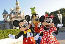 Disneyland / A great day a Disneyland to make your holidays a little less dismal
