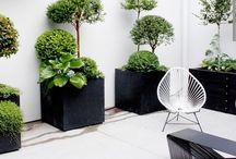 Interior: Garden 'nd balcony