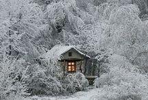 ❄ ☃ Winter ☃ ❄