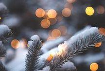Christmas / A Rustic & Cozy Christmas