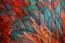Texture, color & patterns