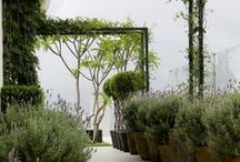 Urban garden design / Because the garden is also part of the home