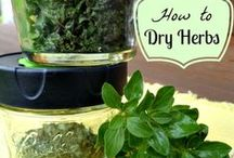 Food - dehydrator recipes