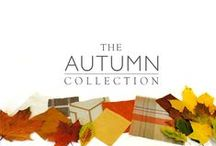 Autumn Collection / A board with images and inspiration from our Autumn Collection.