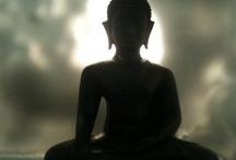 Zen influence on myfoodcoach.de