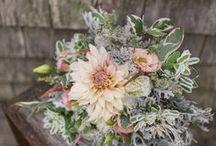 September flowers / September seasonal farm flowers by Aster B. Flowers for weddings in Massachusetts