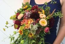 July flowers / July seasonal farm flowers for weddings and events. By Aster B. Flowers in Essex, Massachusetts