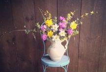 May flowers / May seasonal farm flowers for Massachusetts weddings, grown by Aster B.