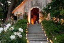 Weddings / by Monica Lindsay