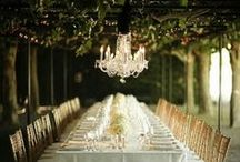 Green Grape and White Flower  / Wedding Inspiration: a rustic and chic table setting in a wineyard  Colors: green and white