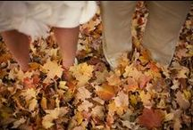 Autumn Wedding / Seasonal Inspiration Wedding Ideas