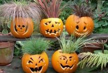 Fall  and Halloween.