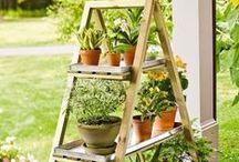 TWD: In the Garden / Release the inner gardener in you.