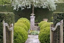Exterior :: Gardens / Landscape, lush gardens, interesting structures, and great furnishings that create delightful outdoor spaces. / by Krista Schwartz - INDICIA