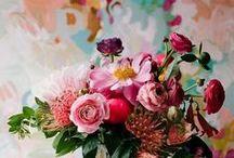 flores / by daniela castelo