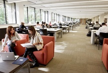 Innovant on Campus / Just like open plan furniture systems have replaced cubicles, higher education has moved away from a traditional aesthetic with new modern & design-savvy environments. We only wish the library looked this way when we were in college.