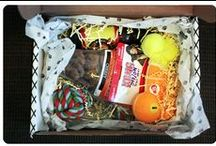 """Posh Pet Box / About: """"Hand Select Premium Toys, Treats, Clothes and Accessories to Spoil Your Pup."""" For full subscription box reviews, visit http://musthaveboxes.com."""