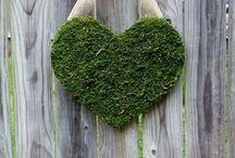 Corazón / Coeur