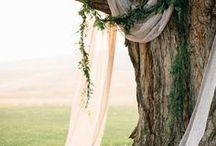Trauungshintergrund ~ backdrop / Das Besondere bei jeder Trauung! Für euer Ja-Wort gestalte ich einen einzigartigen Hintergrund: vor einer Mauer, an einem Baum vor einem Tor oder einem Fenster.