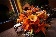 Alexis & Wes | Hotel Valencia | Goen South Weddings