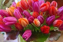 Bouquets- Hot pink and orange / using hot pink and orange as colour themes for weddings and events: flowers, outfits, table settings,decoration