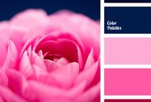 50 Shades of Pink Color Palettes