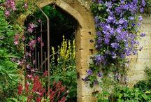 Outdoor Spaces and Gardens 2 / by Barbara Collin