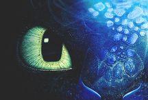 I ❤️ Toothless!!!