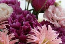 【ピンク】生花ギフト / Flower noteのピンク生花ギフトアレンジのギャラリーです