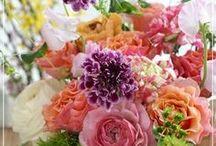 【イエロー・オレンジ】生花ギフト / Flower noteの生花ギフトアレンジ。 イエロー・オレンジ系のギャラリーです