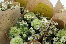 【花束定期便】 / 毎月季節の花をお届けするお花の定期便です