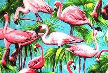 I ❤️ flamingos!!!