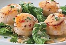 Scallops - Just Scallops / Recipes featuering scallops