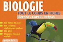 E-Books en Sciences / Nouveautés