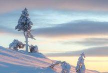Winter☆