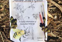 Nature Study Australia / Nature study inspiration for Australian homeschool mamas and home of the Australian Nature Study Guides which walk alongside you through the Southern Hemisphere's seasons while focusing on Australian mammals, birds, flowers and insects. Nature Study Australia inspires kids and homeschool mamas in natural learning and nature and outdoor activities, nature observations, natural science, outdoor learning, nature arts and crafts.