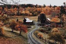 Automne / Fall / Toutes les photos relatives à l'automne #autumn #fall #automne #leaves #colors #colorful