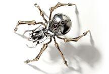 Projet insecte