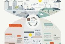 Infographics  / In-house infographics  / by DotInfographics