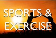 Sport & Exercise / Getting to where you want to go is one thing, staying there is another. How are you looking after your body to maximise sports performance?