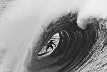 ❀ Surf's up ❀
