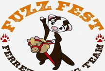Fuzzfest / Fuzz fun and friends Fuzzfest is the biggest Ferret festival we know a 2 day show with camping! we also do Ferret racing and all other things ferret like. Ferre