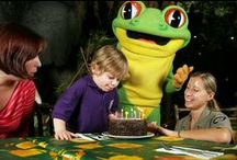 Birthday Parties / Rainforest Cafe is a great place to host your child's birthday party. Our fun and funky jungle setting adds to the excitement of the celebrations.  With thunder and lightening crashes overhead, elephants trumpeting in the background and chimpanzees chattering, your own little monkeys will have a whale of a time!
