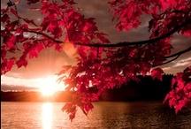 ilove sunsets